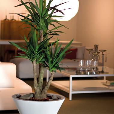 vaso in resina chiron colore bianco