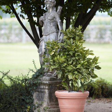 smooth double wall pot pale terracotta colour