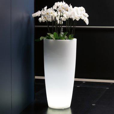 vaso a led talos light