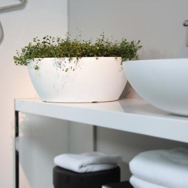 resin bowl thetis white colour