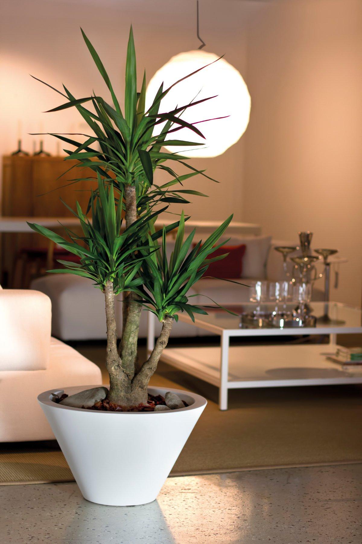 Chiron nicoli - Ikea vasi decorativi ...